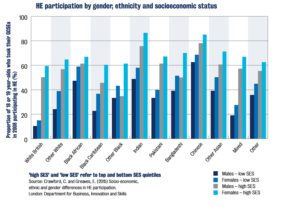 Participation by SES and ethnicity graph image