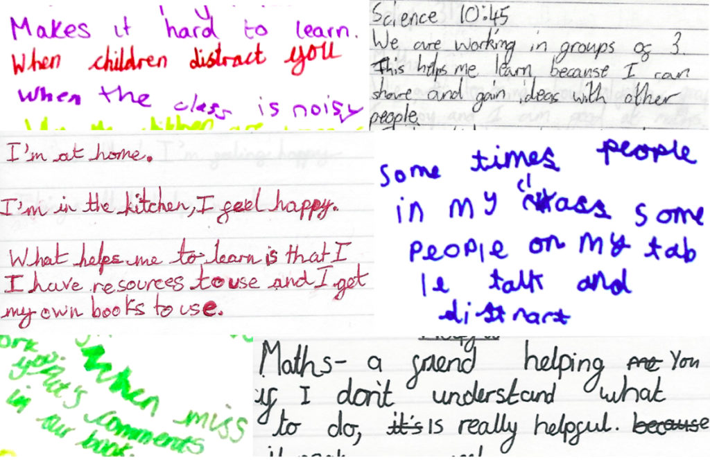 Pupil diary excerpts